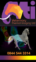 Equine Thermography
