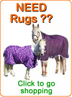 Shop for Horse Rugs