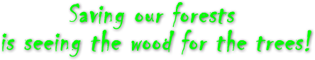 Saving our forests is seeing the wood for the trees