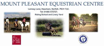 Advice from Patsy King, Mount Pleasant Equestrian Centre.