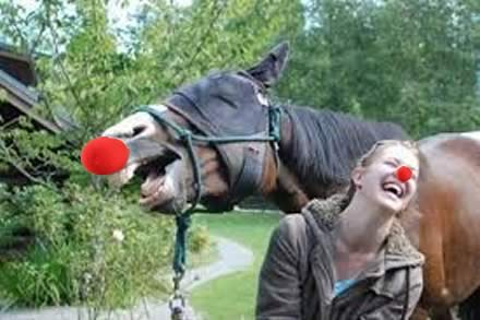 HAPPY REDNOSEDAY